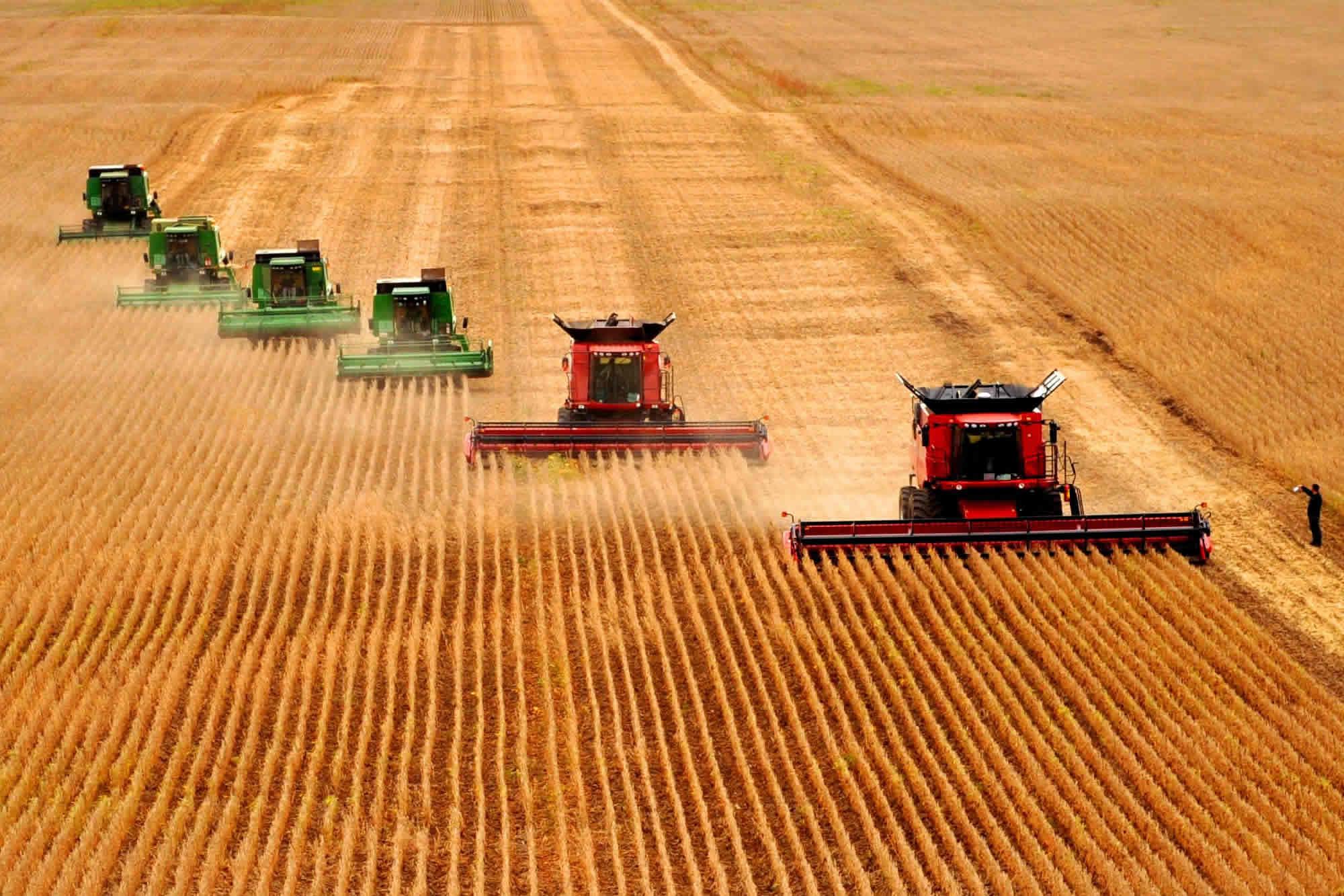 有机功能农业